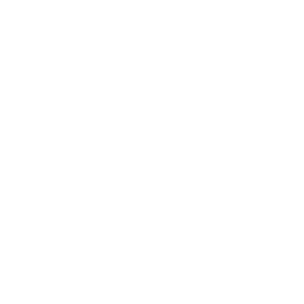 The logo of the UEFA Europa League.