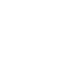 The windswept logo of Formula 1.