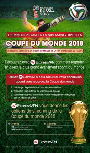 Infographie : Tous les moyens pour regarder la Coupe du monde de la FIFA 2018