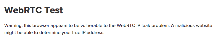 Web RTC Test - Vulnerable