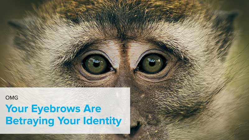 your eyebrows are betraying your identity