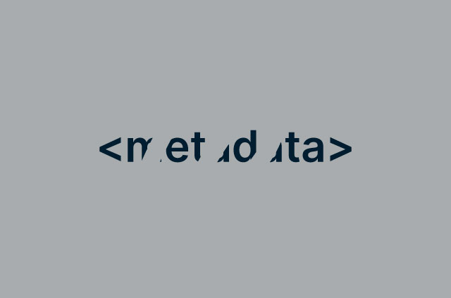 the word metadata in html tags partly conceiled by empty space