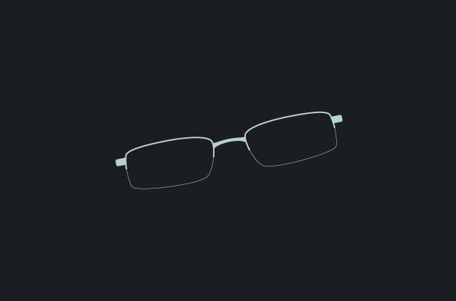 Edward Snowden's glasses.